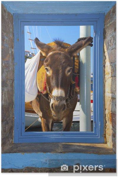 Poster Vue d'un âne posant jeté un cadre de fenêtre à Santorin Islan - Villes européennes