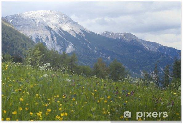 Poster Vue paysage d'herbe et de montagnes dans le backg - Montagne