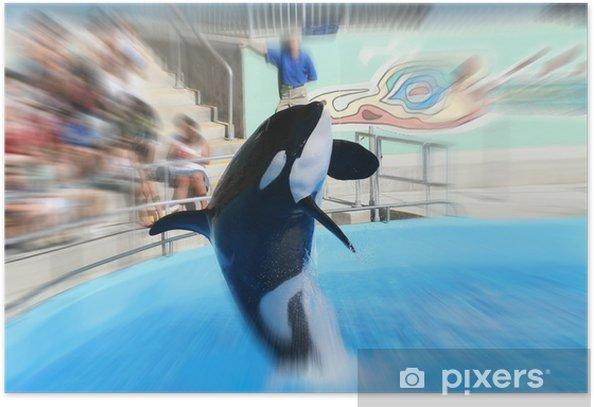 Poster Walvis springen - Onderwater