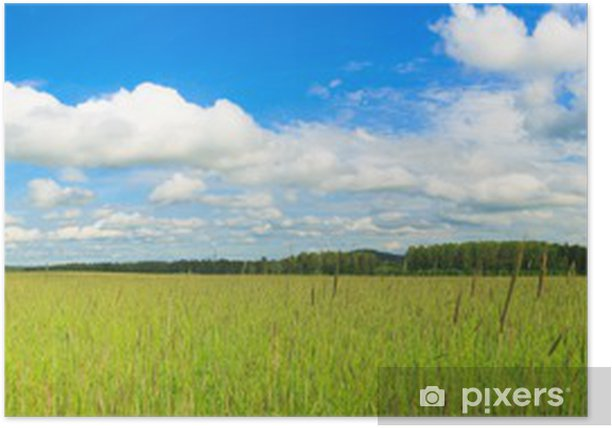 Wheat field panorama Poster - Seasons
