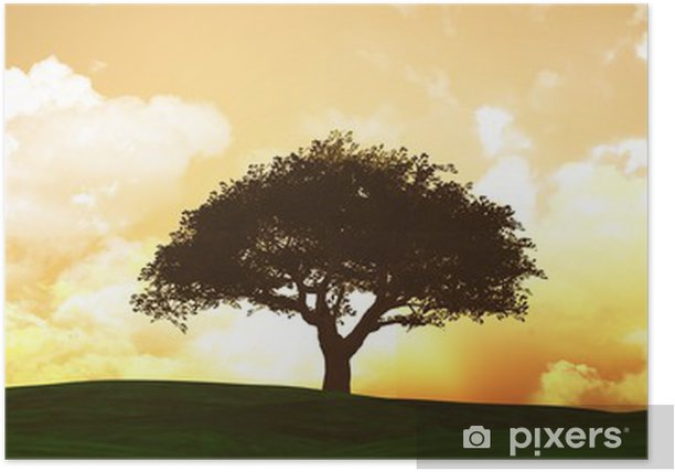 Poster Widescreen sunset paysage - Campagne