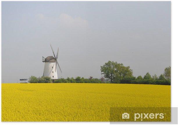 Poster Windmühle bei Schmerlecke, NRW, Rapsfeld, Landwirtschaft - Sports d'extérieur