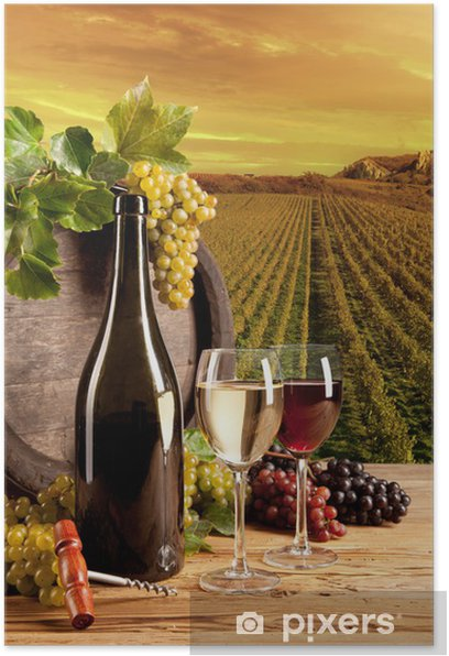 Wine in vineyard Poster - Themes