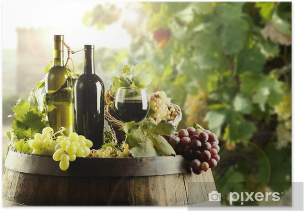 Wine with cask and vineyard Poster - Themes