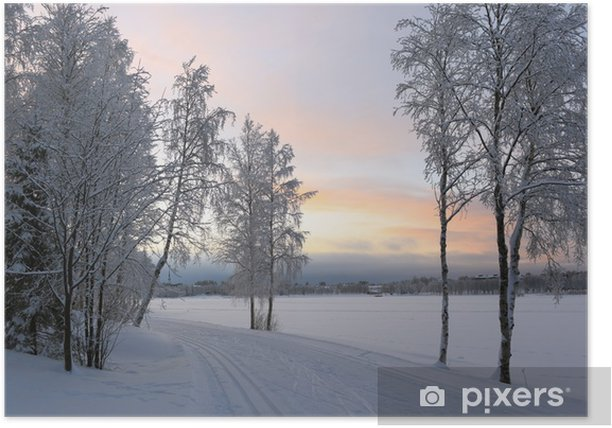 Winter landscape in Finland Poster - Themes