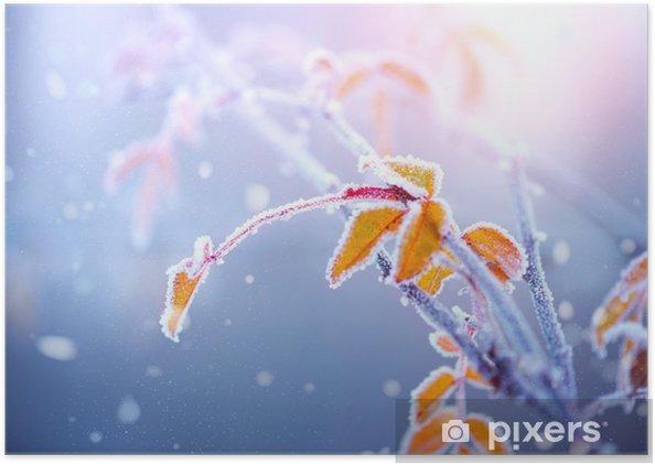 Poster Winter natuur achtergrond. Bevroren tak met bladeren close-up - Landschappen