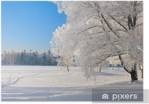 Poster Winter park dans la neige - Thèmes