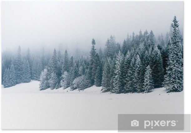 Winter white forest with snow, Christmas background Poster - iStaging