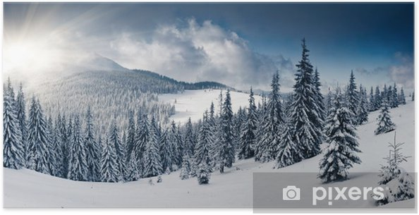 Poster Winter - Thema's