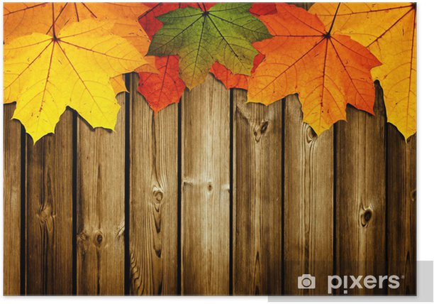 wooden background with autumn maple leaves Poster - Seasons