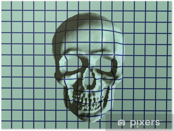 Poster X crâne ray - Vie