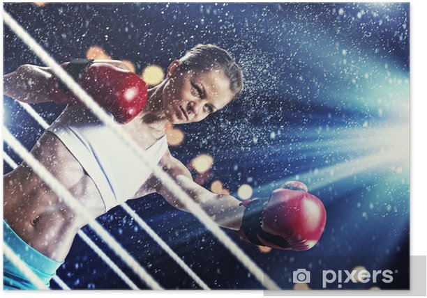 Young boxer woman Poster - Themes