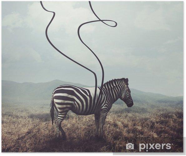 Poster Zebra en strepen - Dieren