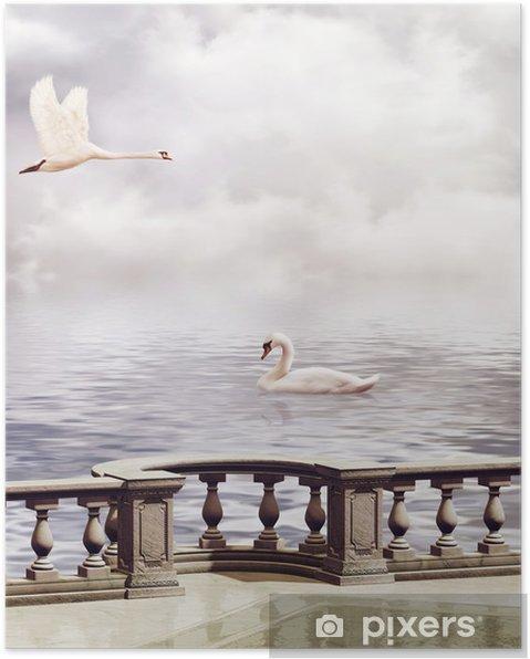 Poster Zwanen - Zwanen