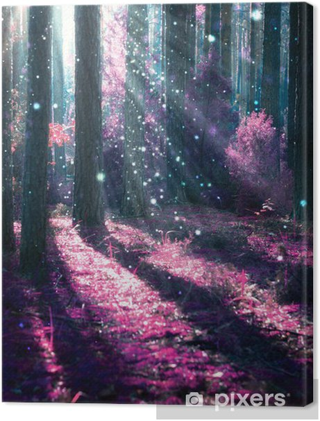 Fantasy Landscape. Mysterious Old Forest. Premium prints - iStaging