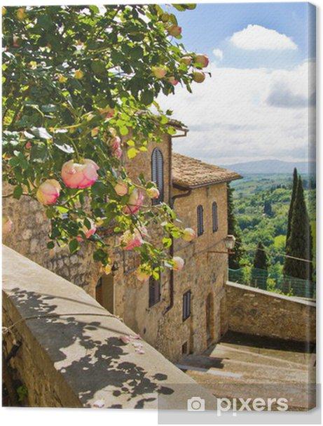 Roses at balcony in San Gimignano, Tuscany landscape background Premium prints - Themes