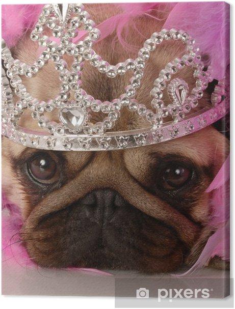 spoiled dog - adorable pug dressed up as a princess Premium prints - Pugs