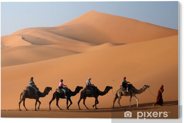 PVC Print Camel Caravan in de Sahara woestijn - Woestijn