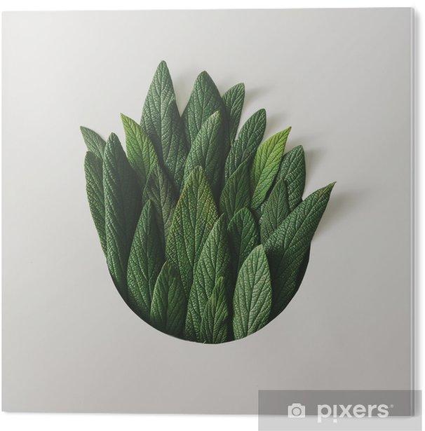 PVC Print Creatieve minimale rangschikking van groene bladeren. natuur concept. plat leggen. - Bloemen en Planten