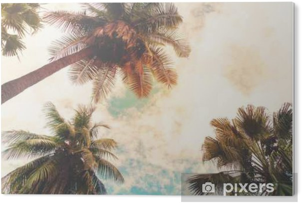 Landscape nature background of shore tropic. Coconut palm trees at seaside tropical coast, vintage effect filter and stylized PVC Print - Plants and Flowers