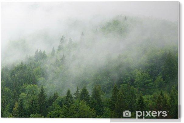 Misty forest PVC Print - Landscapes