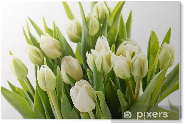 nice tulips PVC Print - Themes
