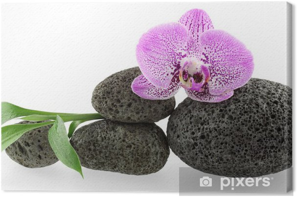 Quadro su tela arredamento massaggio zen orchidée galets et