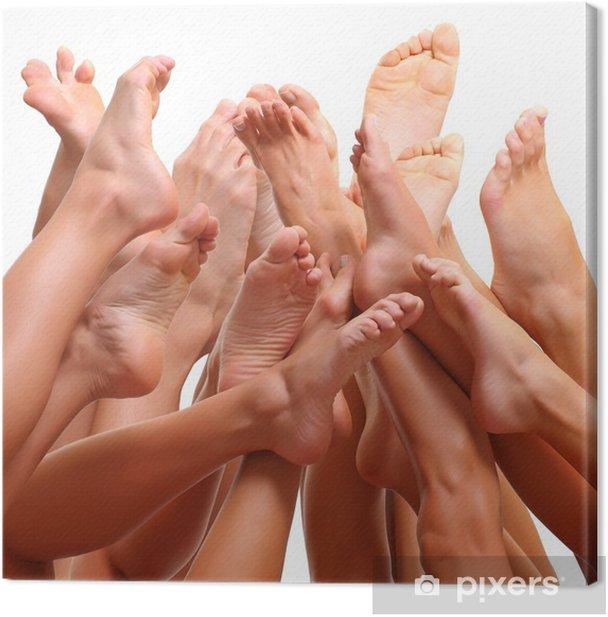 Quadro su Tela Bei piedi femminili sottile di gruppo di ragazze - Bellezza e Cura del corpo