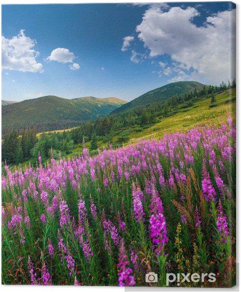 Quadro su Tela Bellissimo paesaggio autunnale in montagna con fiori rosa