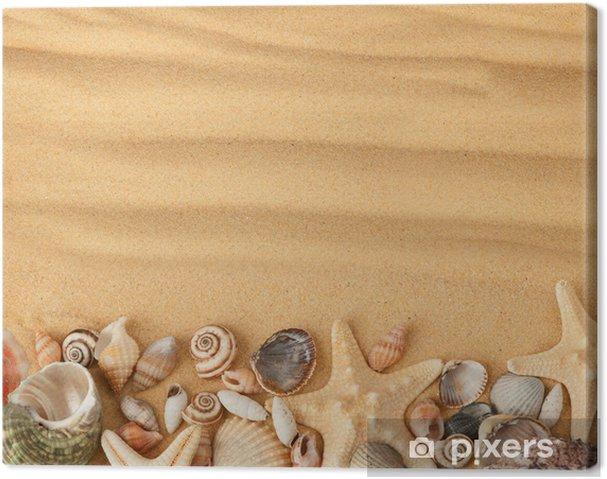 Quadro Su Tela Conchiglie Di Mare E Sabbia Sfondo Pixers