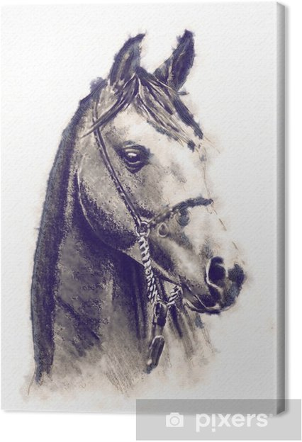 Quadro su tela disegno a matita testa di cavallo a mano libera pixers viviamo per il for Disegni di cavalli a matita