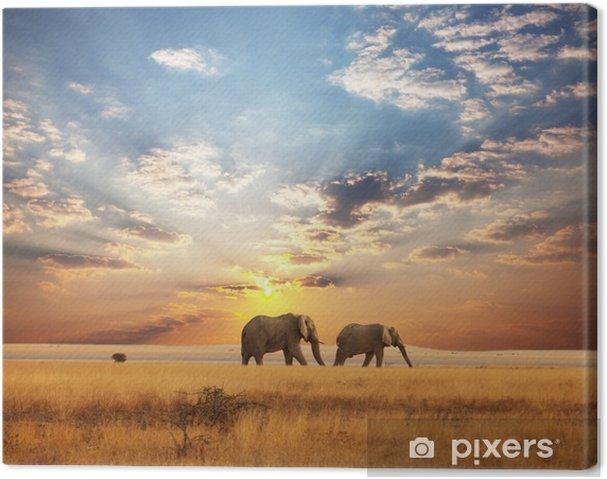 Quadro su Tela Elefante - Temi