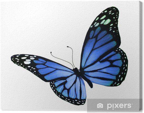 Quadro Su Tela Farfalla Blu Isolato Su Sfondo Bianco Pixers