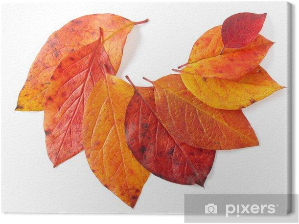 Quadro su Tela Foglie d'autunno - Stagioni