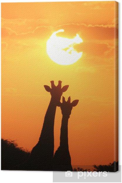 Quadro su Tela Giraffa - African Wildlife sfondo - Coppia di oro - Animali