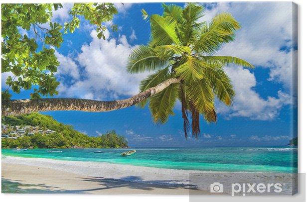 Quadro su Tela Idilliaco paesaggio tropicale - Seychelles - Temi