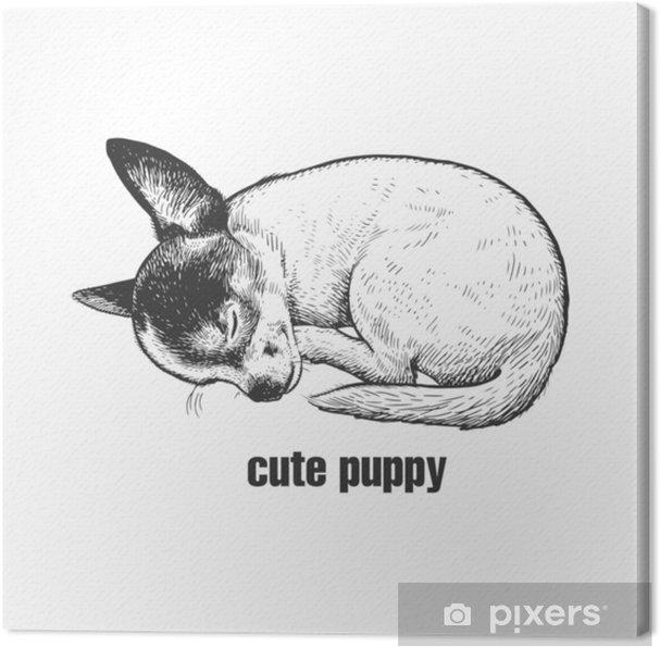 Disegno Cane Bianco E Nero.Quadro Su Tela Il Cucciolo Sta Dormendo Razza Di Cane Chihuahua