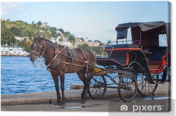 Quadro su Tela Karibik Kuba Havanna Kutsche mit Pferd - Vacanze