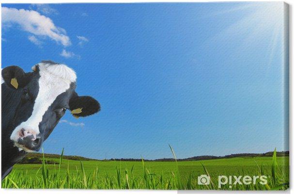 Quadro Su Tela Mucca Che Guarda Con Uno Sfondo Di Una Prateria Verde E Un Cielo Azzurro