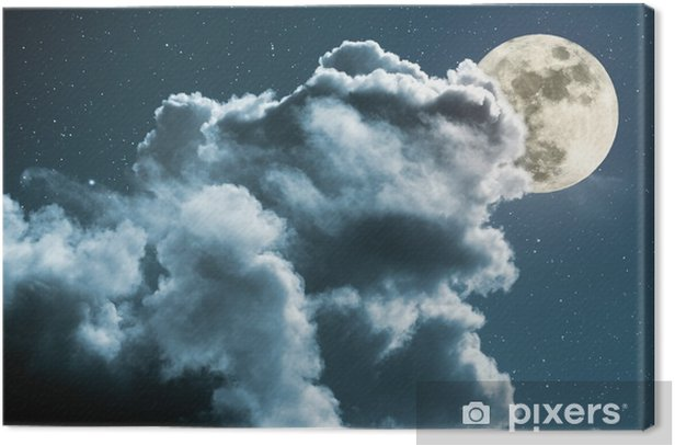Quadro su Tela Notte di luna piena - Temi