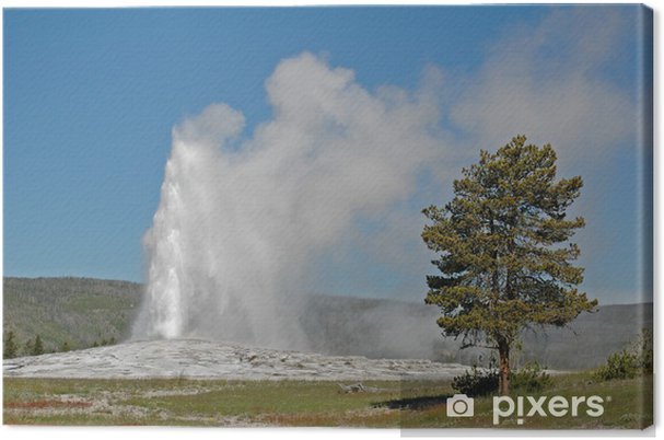Quadro su tela old faithful geyser parco nazionale di yellowstone