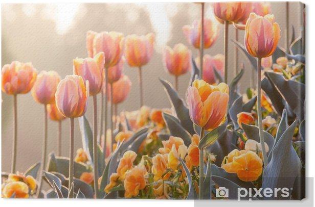 Quadro su Tela Orange Garden - Temi