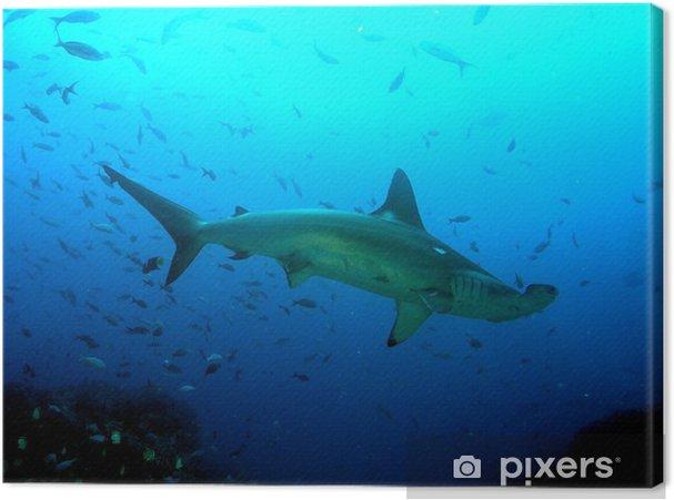 Quadro Su Tela Pesce Martello Pixers Viviamo Per Il Cambiamento