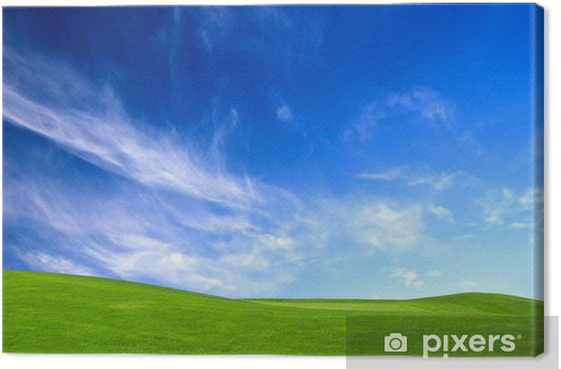 Quadro su Tela Prato verde - Stagioni