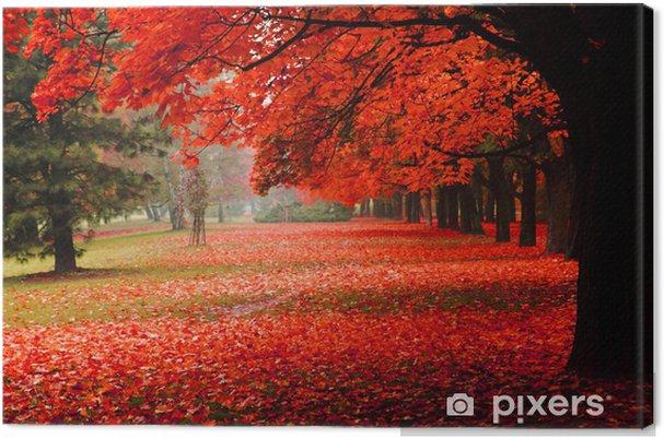 Quadro su Tela Rosso autunno nel parco - Spazio da decorare