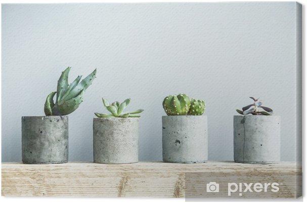 Quadro su Tela Succulente in vaso di cemento fai da te. sala scandinava arredi interni - Casa e Giardino