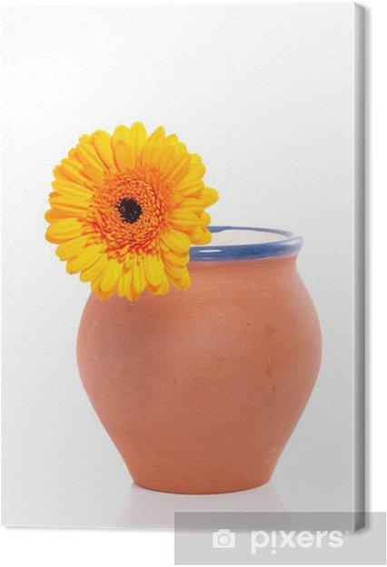 Vaso Di Coccio.Quadro Su Tela Una Gerbera Arancione In Un Vaso Di Coccio In Terracotta Isolata Ove