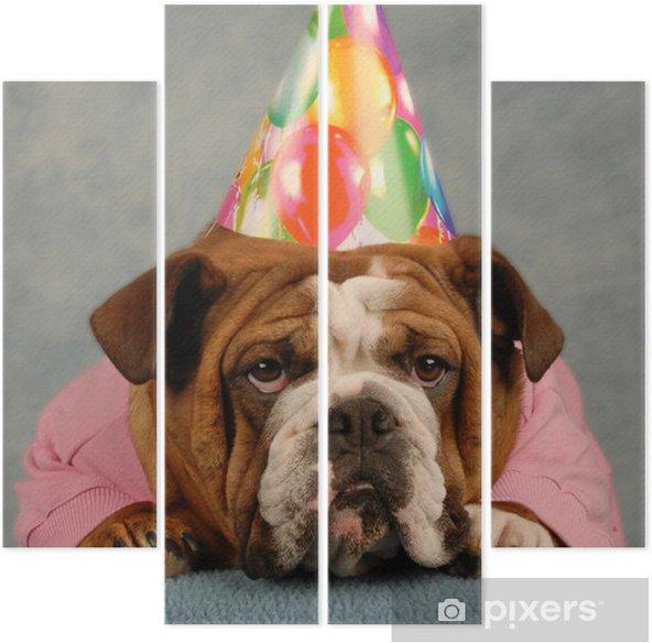 Quadriptych Engelsk bulldog kledd opp rosa genser og bursdag hatt -  Spesielle Anledninger 0795d56ceb72a