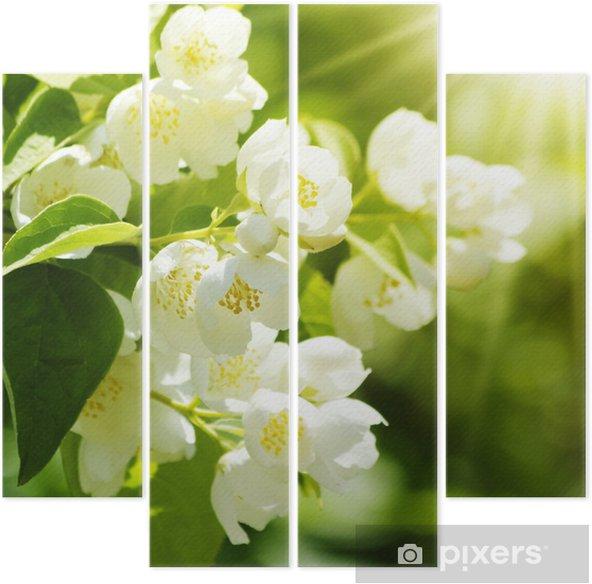 Quadriptyque Fleur Jasmin Pixers Nous Vivons Pour Changer
