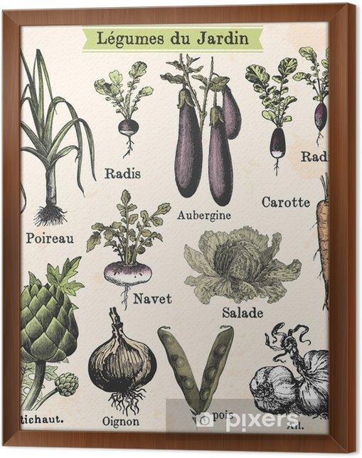 Quadro com Moldura Légumes du jardin - Estilos